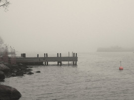 Encased in Fog_04
